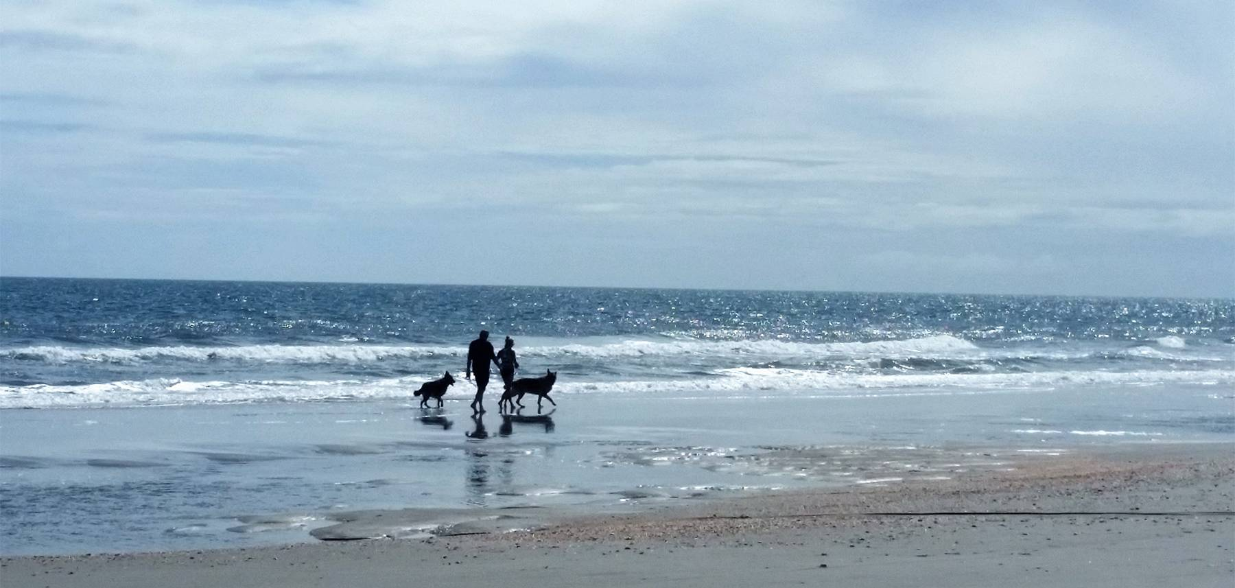 Couple walking dogs on Myrtle Beach