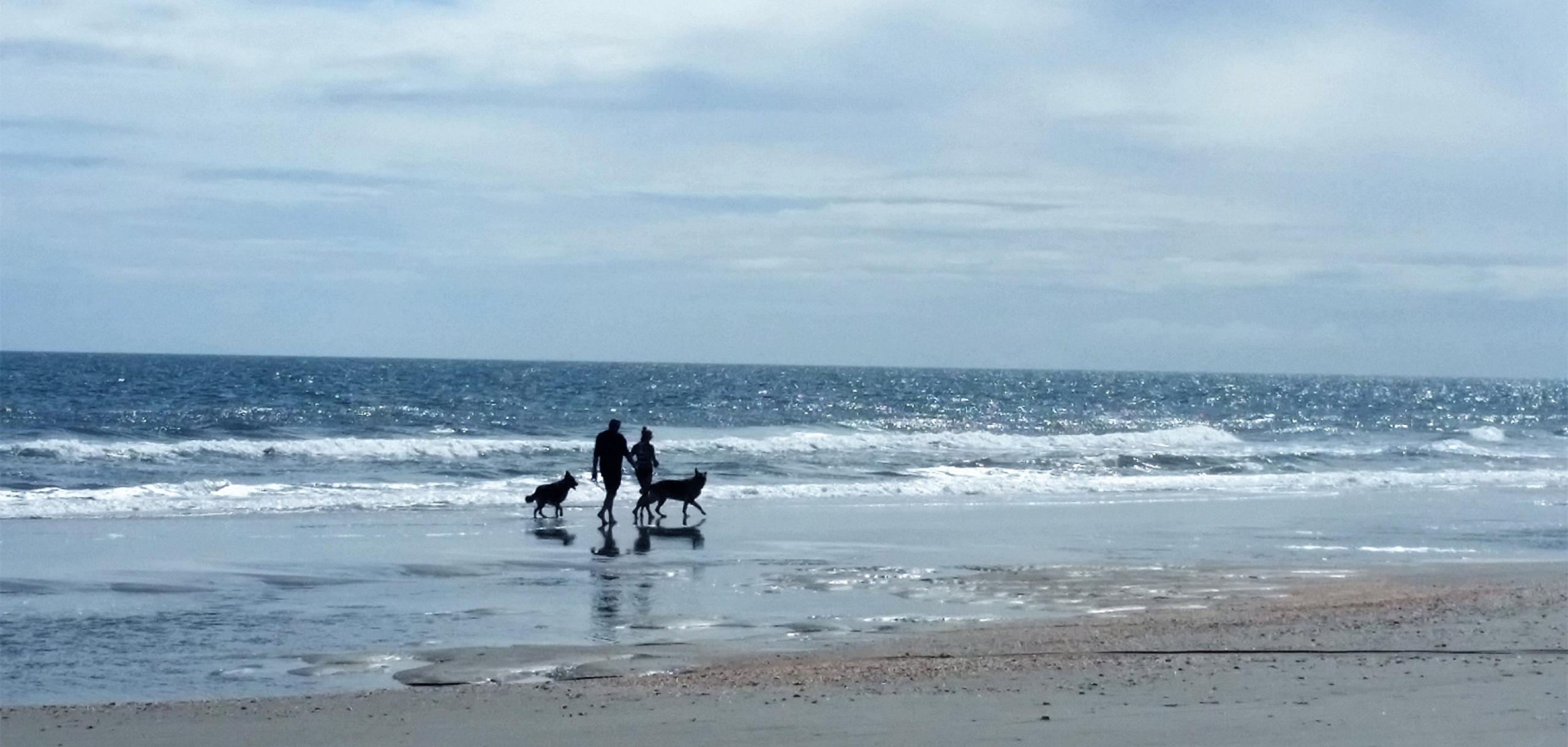 Couple walking dogs on Myrtle Beach